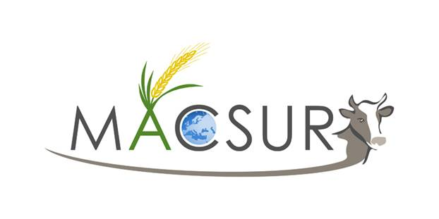 Logo of the project: MACSUR in capital letters, a maize cob 'growing' out of the peak of the letter A, a globe fitted into the letter C. The head of a cow is placed behind the word and diminishes in a fine bow under the word 'MACSUR'